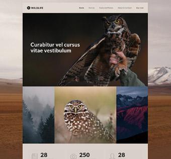 Be-Wildlife